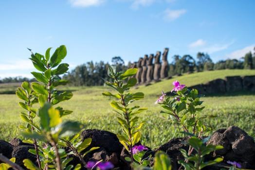 Plan potovanja za Velikonočni otok - kraj, kjer moai gledajo proti morju