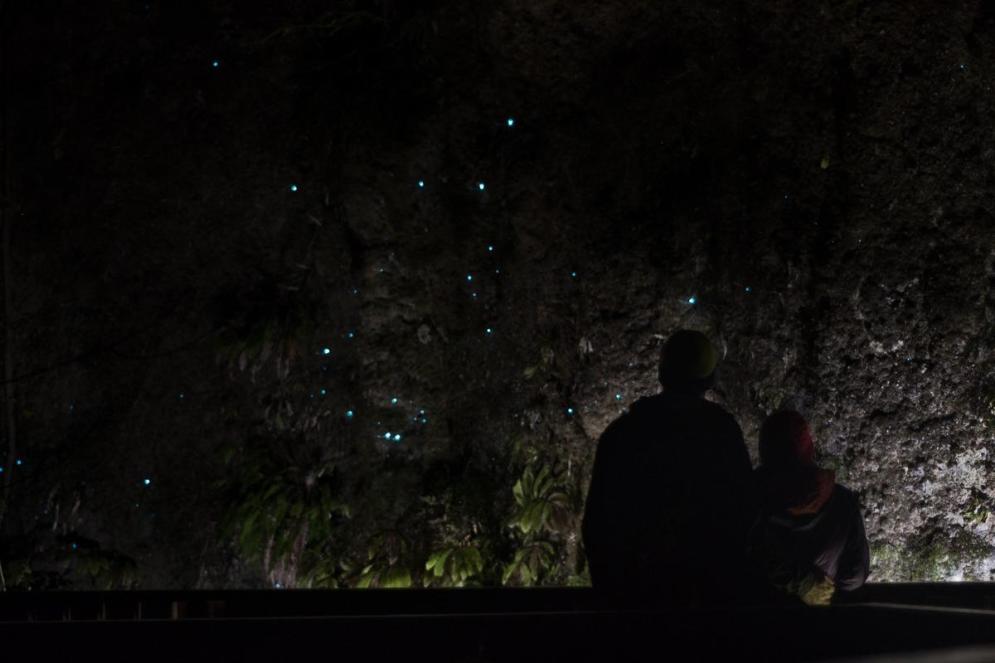 Modre pikice na črnini (Svetleči se črvi), par v senci (Plan potovanja za Novo Zelandijo)
