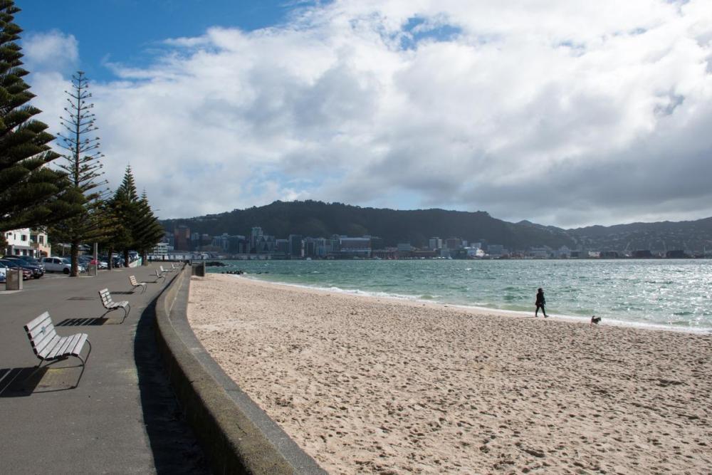 Wellington coastal walk