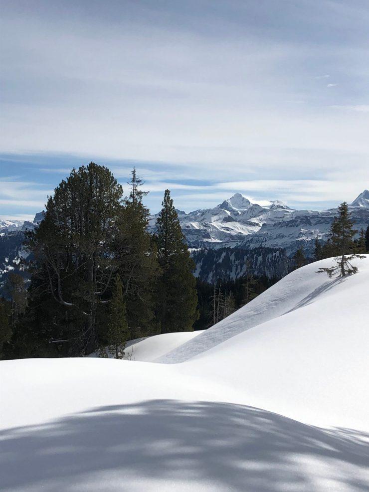Schneeschuhtour im Hohgantgebiet