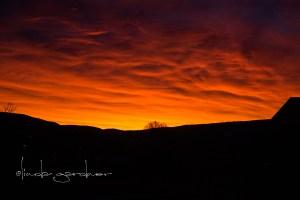 sunrise12.27