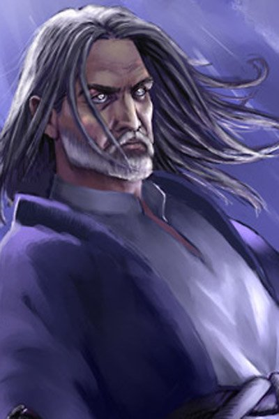 A mage with long gray hair.