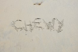 Chewy's name in the sand