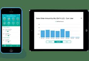 sap_b1_sales_app
