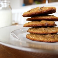Paleo Coconut Chocolate Chip Cookies