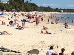 Slip Past Main Beach on the coastal track out to the entrance to Noosa National Park.