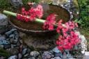 水琴窟 Suikinkutsu, a water pot that makes a delicate natural sound in a ceramic pot under the ground..