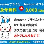 Amazonプライムが永年無料さらに・・!東京電力「電気+ガス」の「 とくとくガスAPプラン 」新規申込または切替で