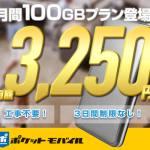 大容量100Gが月額3,250円!クラウドSIMのモバイルWi-Fi【 ポケットモバイル 】