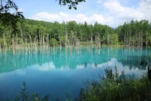 北海道の青い池