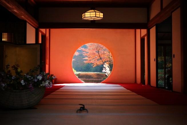 明月院の丸窓から見た紅葉