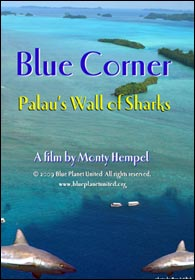 video_bluecorner