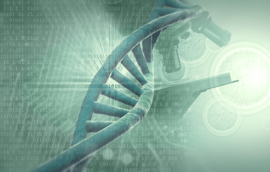 Blueprints For Living | Creation vs Evolution Blog DNA: Evidence of ...