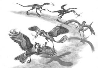 Bird from dinosaurs?