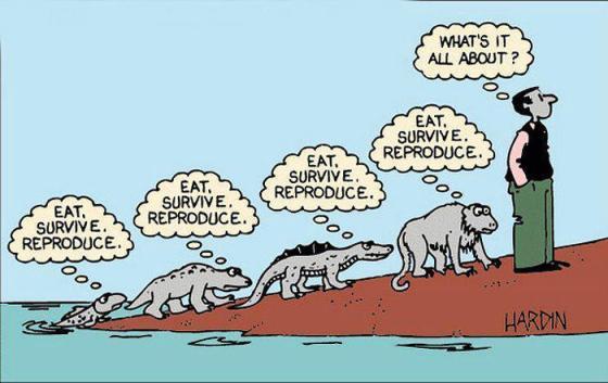 eat survive