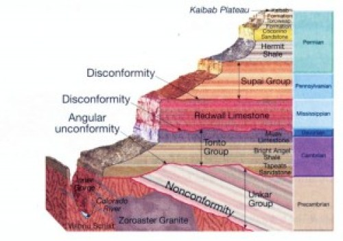 The proposed geologic column