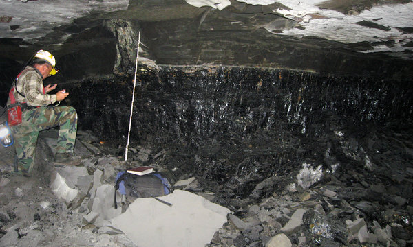 100 sq miles of underground fossil forests buried in place... how did this happen?