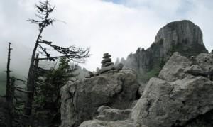Climbing Mt. Improbable.