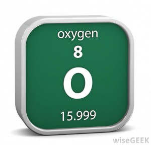 oxygen made things evolve