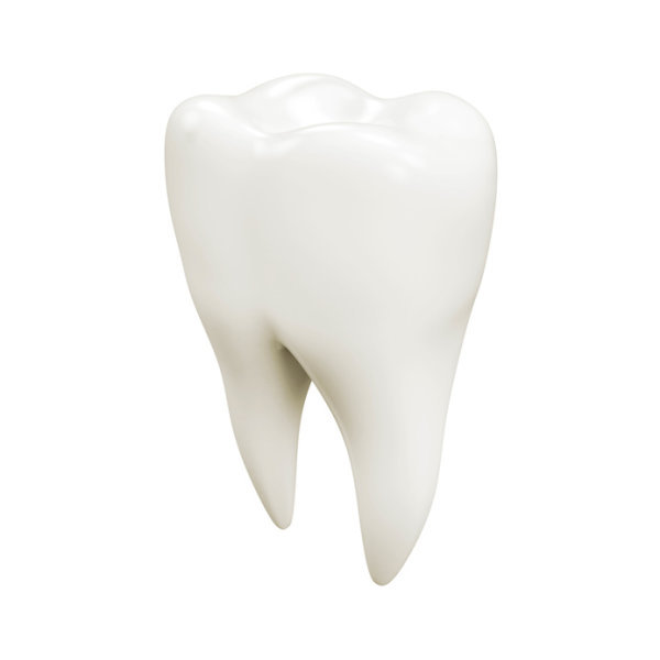 A tooth.