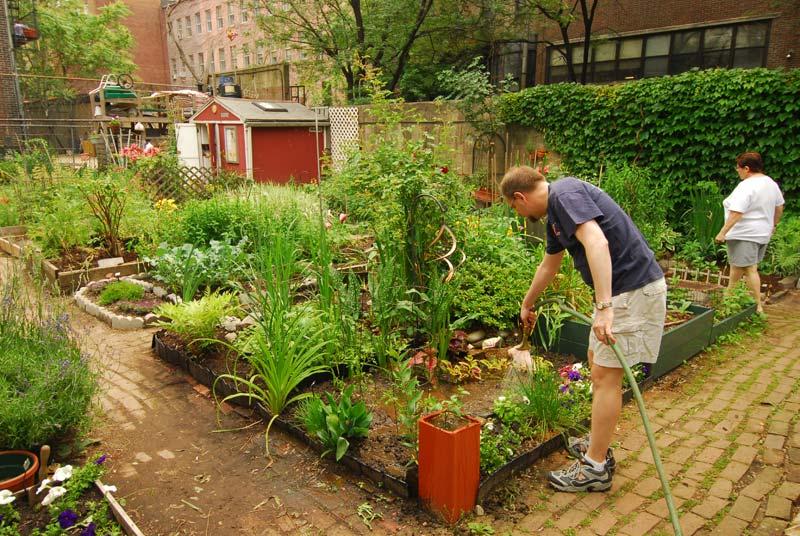 Blueridge Sharing Garden – UPDATE: Lionsgate Rotary Club Pledges Support