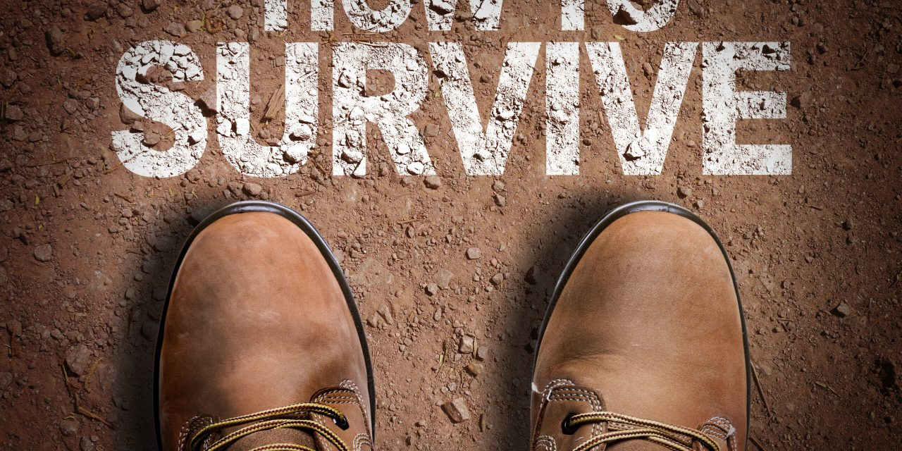 Stories – Survival Guides Compiled by God