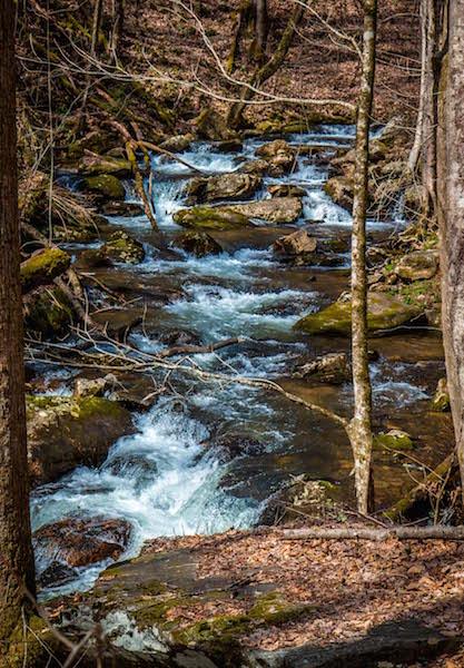 Smith Creek Trail to Anna Ruby Falls in Unicoi State Park near Helen, GA