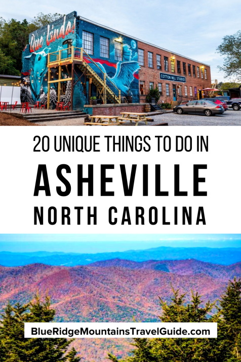 The 20 Best Unique Things to Do in Asheville NC from Biltmore Estate tours and foraging for food to rafting the French Broad River and seeing endangered Red Wolves. | things to do in asheville n.c. | things to do asheville north carolina | art district asheville | un things to do in asheville nc | things to do in downtown asheville nc | things to do near asheville nc | unique things to do in asheville nc | things to do in downtown asheville