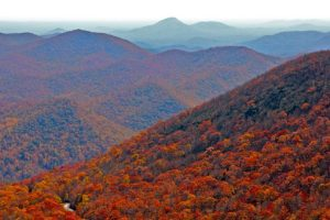 Fall colors in Georgia at Brasstown Bald