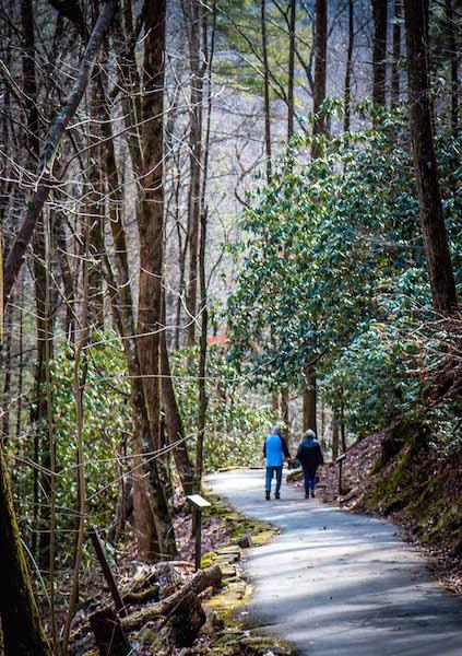 Couple Hiking the Anna Ruby Falls Trail near Helen GA