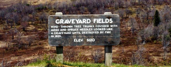 Best Pisgah Trails - Graveyard Fields