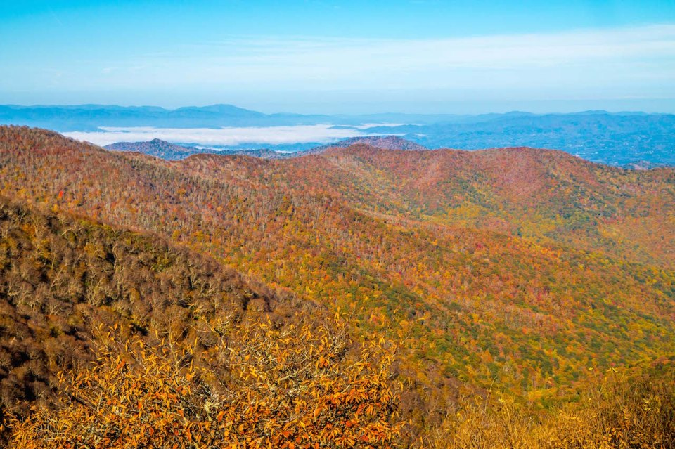 Fall Colors View from Craggy Gardens, North Carolina