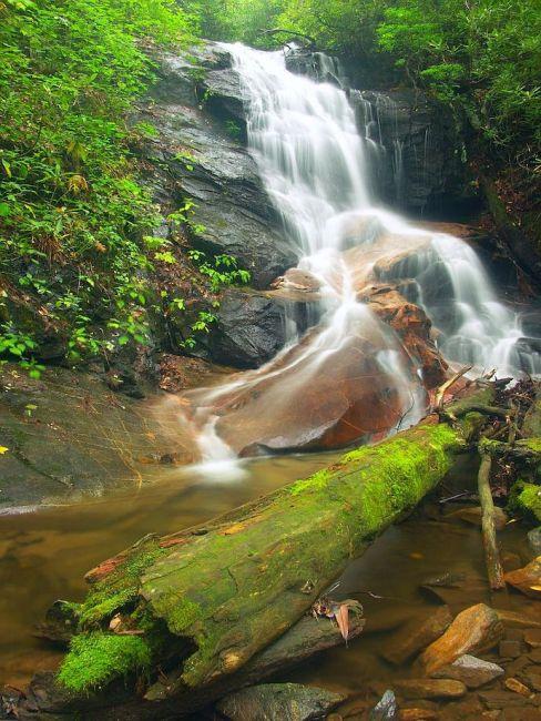 Best Pisgah Trails - Log Hollow Falls
