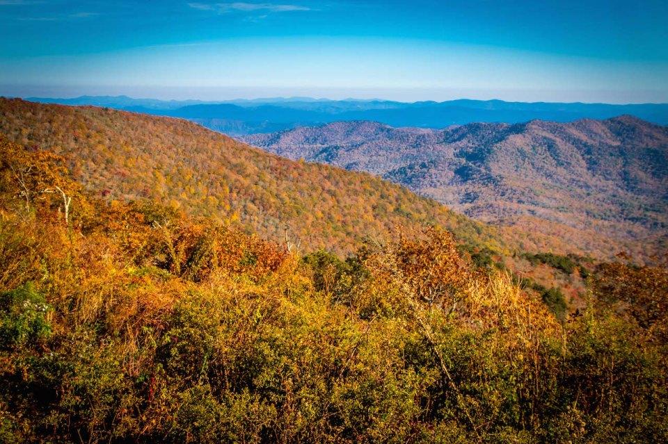 View Behind Pisgah Inn in Peak Fall Colors