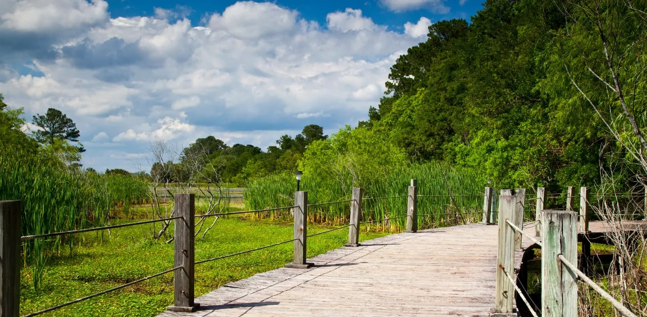 Best Boone NC Hiking Trails, Image via Canva