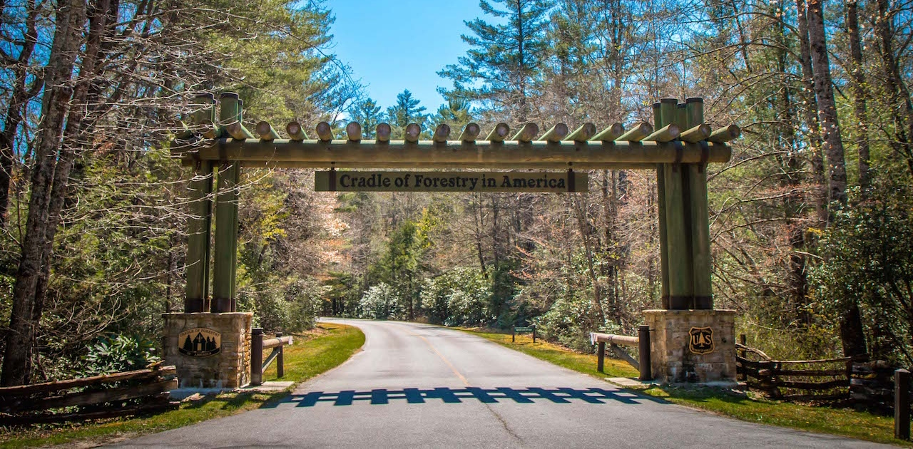 Entrance to Cradle of Forestry in America