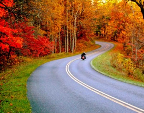 The color of winter on cool days on a Harley.
