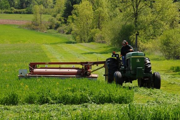 Farmer mowing.
