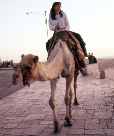 Amy on a camel ride in Israel.