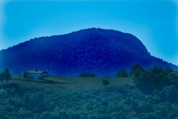 The Buffalo Mountain