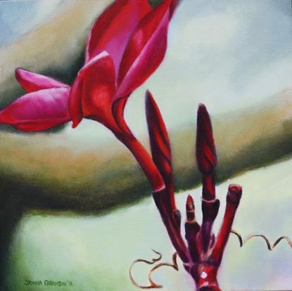 "Frangipani, 12""x12"", acrylic on canvas, © Donna Grandin, 2011. Sold"