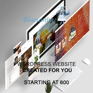 WordPress website made for you
