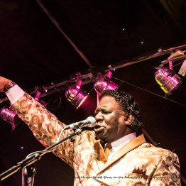 Mud Morganfield - Friday BotF - June 2015_0057l