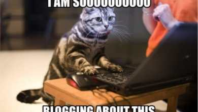 Photo of So you want to start a blog…