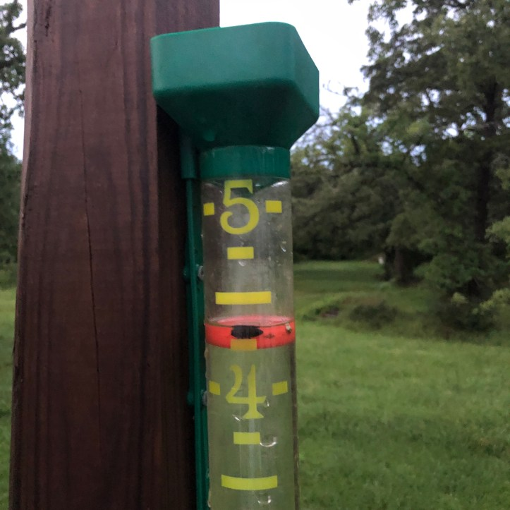Rain gauge with four and a half inches of rain in it.