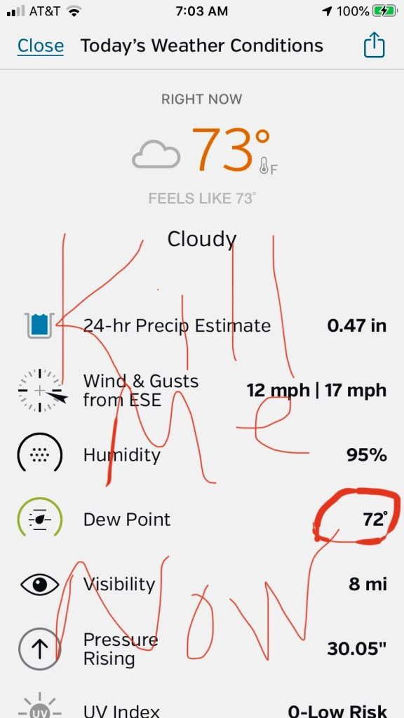 Weather Underground report showing ninety-five percent humidity and seventy-two degree dew point