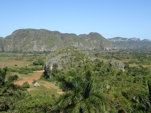 Clear day in Viñales, Cuba, Blue Sky and Wine