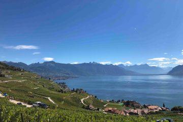 Lavaux Vineyard Geneva Switzerland