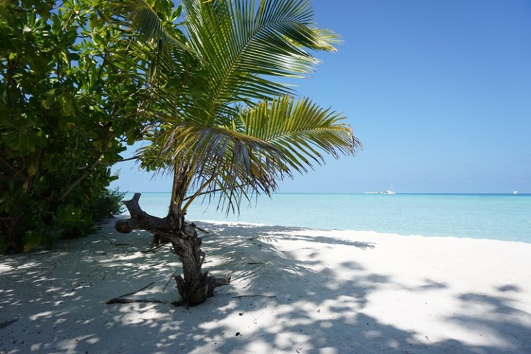 Viligili Island, Maldives, Blue Sky and Wine
