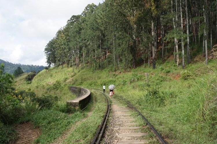 Ella railway, Sri Lanka, Blue Sky and Wine